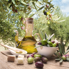 Tasting italian olive oil and freshly harvested olives.