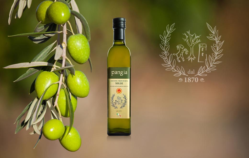 Extra virgin olive oil Pangia - Italy / Extra natives Olivenöl Pangia - Italien. Olio extravergine di oliva - Olio Pangia Dop - Italia.
